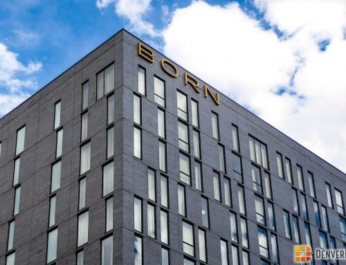 Hotel Born Final Update